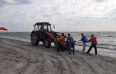 На Арабатке мертвых медуз собирали лопатами и грузили на трактор: у людей сдали нервы