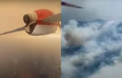 Українські рятувальники показали гасіння пожеж у Туреччині: відео