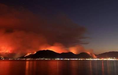 Масштабні пожежі у Туреччині: заарештували сімох підозрюваних у підпалах лісів