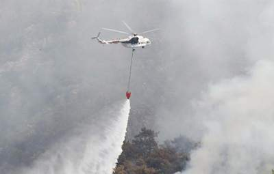 Пожежі у Туреччині: зливи допомогли рятувальникам боротися з вогнем
