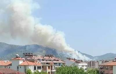В Турции вспыхнул новый лесной пожар – в 400 метрах до аэропорта: видео