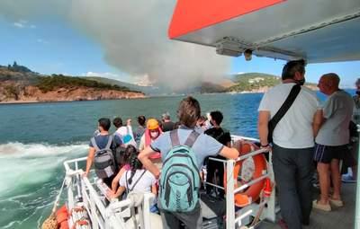 Огонь не оставляет Турцию в покое: пожар вспыхнул на острове возле Стамбула