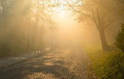 В Украине будет солнечно и сухо, однако туманно: прогноз погоды на 17 октября