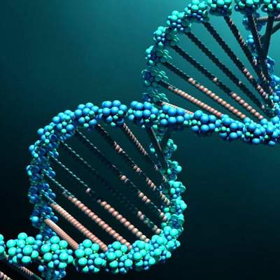 У сучасних людей виявили ДНК невідомих пращурів