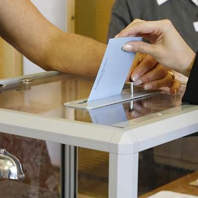 Подкуп избирателей и порча агитматериалов: какие нарушения фиксируют перед выборами
