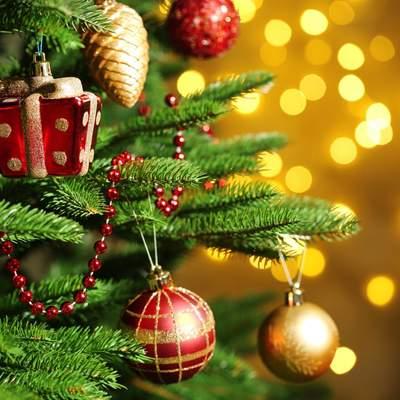 Как будут праздновать Новый год во Львове