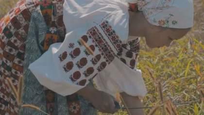 Історія гідності. Століття безправ'я та рабська праця українського селянства