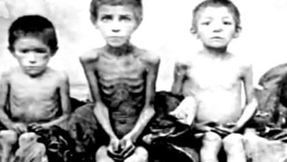 Історія гідності. Голодомор – цим безжальним методом українців хотіли знищити як націю