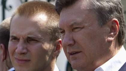 Служба безопасности не дала Януковичам заработать лишние миллионы