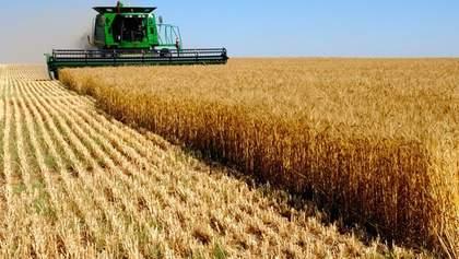 Україна не має достатньо транспорту для експорту свого зерна, – Кутовий