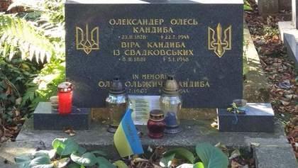 Ексгумація Олександра Олеся: сім'я Михайлишина не знала про могилу поета