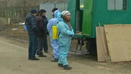 На Тернопільщині оголосили карантин через спалах африканської чуми