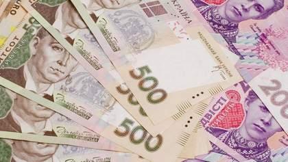 Что покупали партии за деньги украинцев: ассортимент поражает