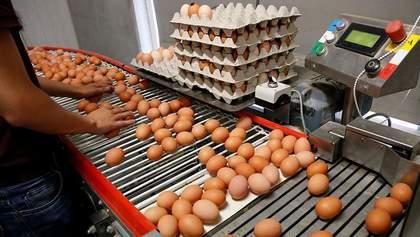 Отруйні яйця: збільшився перелік країн, куди завезли заражений продукт