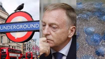 Головні новини 15 вересня: теракт у Лондоні, Лавринович під вартою і нашестя медуз в Одесі
