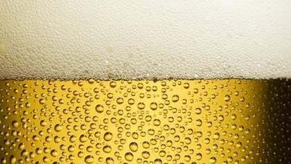 Як пиво впливає на організм людини: 7 несподіваних фактів