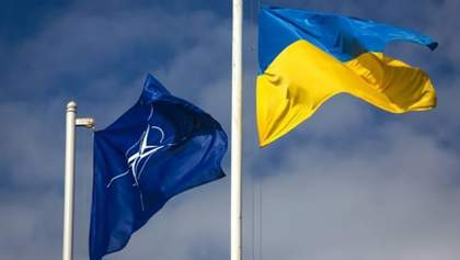 Поддерживаете ли вы вступление Украины в НАТО и ЕС?