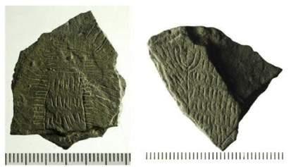 """На данському острові знайшли понад 300 незрозумілих """"сонячних каменів"""""""