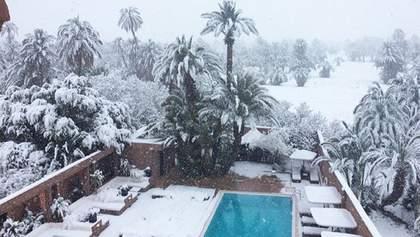 В Марокко впервые за 50 лет выпал снег: фото и видео
