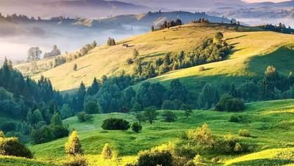 Путешествия по Украине: самые интересные места Закарпатья, которые поражают красотой