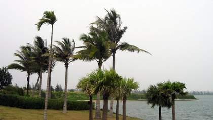 Сильные ливни, сильный ветер и бушующий океан: Гавайи встретили мощный ураган