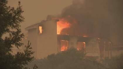 """Зруйнований """"Рай"""": наслідки пожежі у Каліфорнії"""