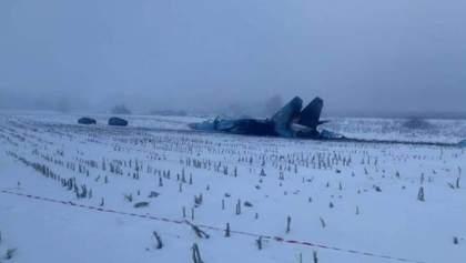 Падение Су-27 на Житомирщине: появились фото катастрофы истребителя