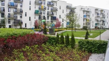 В Україні пропонують запровадити обов'язкове озеленення вулиць та доріг