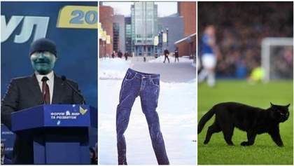 Самые смешные мемы недели: зеленый Вилкул, флешмоб с ледяными штанами и кот-разбойник на футболе