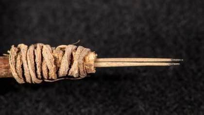 Ученые нашли самый древний инструмент для татуировки: фото