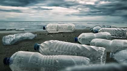 Экологический челендж: как изменились парки и пляжи после необычного флешмоба