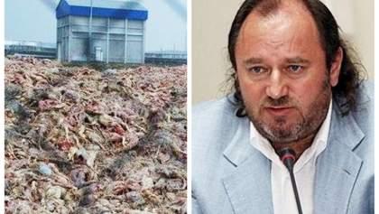 """Справа про могильник """"Гаврилівських курчат"""": власник-екс-регіонал вийшов сухим з води"""