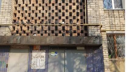 Сотні голубів замурували у стіну будинку на Запоріжжі: фото та відео