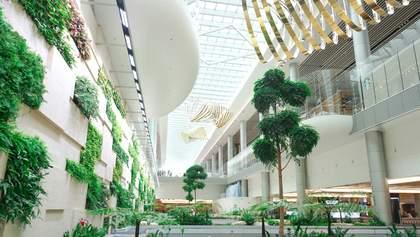 Сінгапур, Японія та інші: аеропорти яких країн стали найкращими у 2019 році
