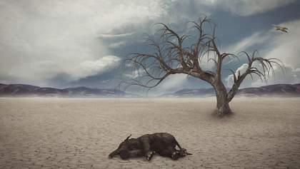 Вчені заявили, що до 2190 року загинуть 20% живих організмів на Землі