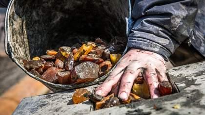 Что нужно сделать, чтобы остановить незаконную добычу янтаря: объяснение Казанского