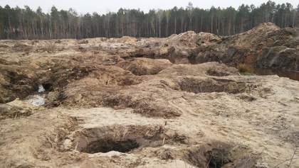 Янтарные схемы: после визита Зеленского на Житомирщине начали расследование