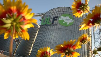 """В """"Укрлендфарминг"""" сохранили площади под посевы озимого рапса в условиях засухи"""