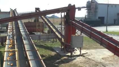 """Після модернізації """"Укрлендфармінг"""" повністю забезпечує аграріїв власним посівним матеріалом"""