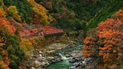 Укрзалізниця призначила додаткові поїзди до осінніх свят: список