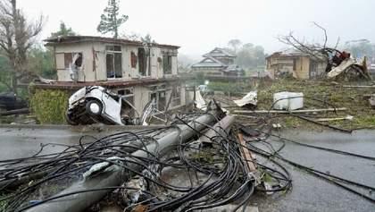 В Японии из-за тайфуна Хагибиз без света остались 45 тысяч домов фото