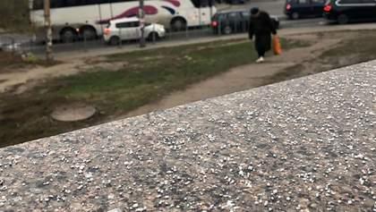 За месяц до зимы в Киеве и Карпатах выпал снег: фото, видео