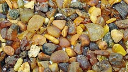 Легализация добычи янтаря: Зеленский подписал закон
