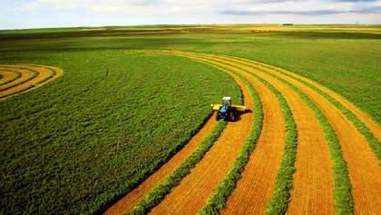 У Кабміні обіцяють держпідтримку фермерам після запровадження ринку землі