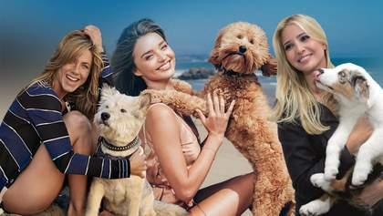 Мировые знаменитости и их собаки: подборка к Международному дню домашних любимцев