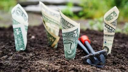 Якою буде вартість кредиту на купівлю землі в Україні
