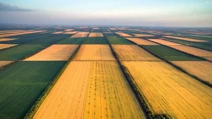 Чи можна продавати українські землі: що відомо про мораторій