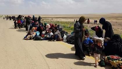 Из-за нового наступления российской армии в Сирии 235 тысяч человек стали беженцами