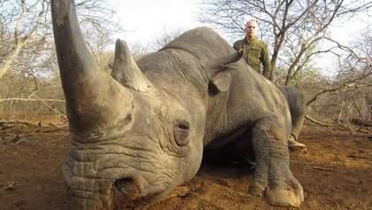 Охота было законной, – у Шуфрича прокомментировали убийство нардепом диких животных