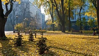 2019 рік став найтеплішим у Києві за всю історію спостережень: коли було найспекотніше